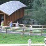 ponte di legno 2012 118
